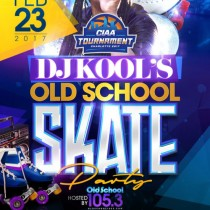 dj-kool-skate-party